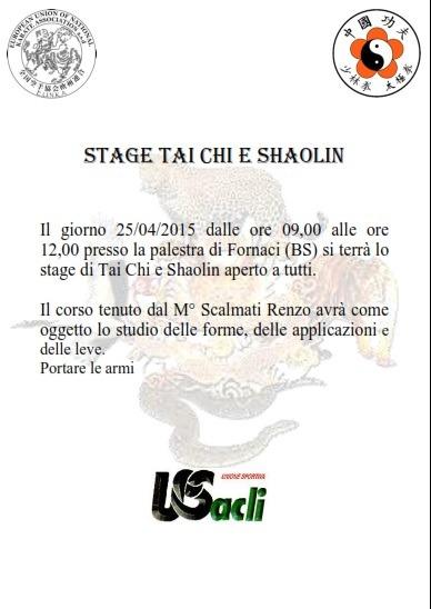 Stage di Tai chi e Shaolin del M° Scalmatti Renzo a Fornaci (BS)