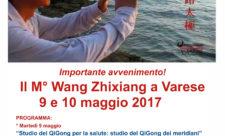 Incontro perfezionamento QiGong e Tiajicon il M. Wang Zhixiang USAcli Varese
